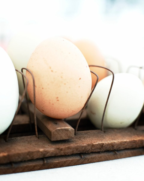 73_EggsPantry_017_LOW