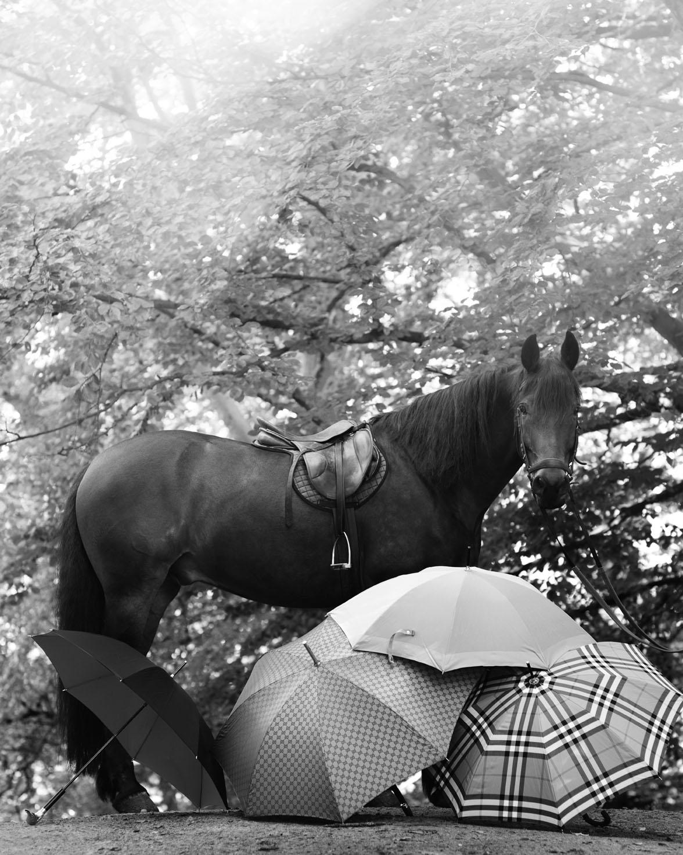 Horserider_11_10_Forside_ 239_LOW